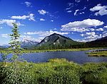 """Vermilion Lake und  Mt. Rundle"""